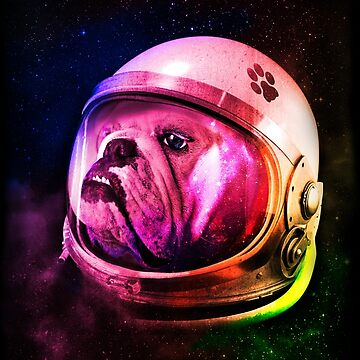 Bulldog in space by fer3407xzhtvz8