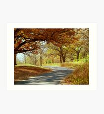 Autumn Country Drive Art Print