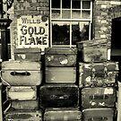baggage by savosave