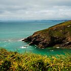 Clifftop View by Cassi Moghan