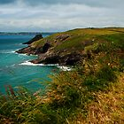 Towards St. Brides Bay by Cassi Moghan