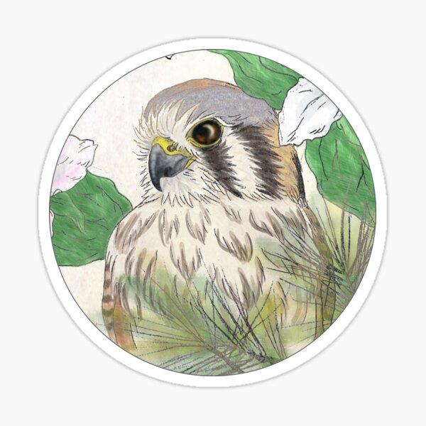 American Kestrel Sticker