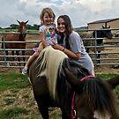 Love of Horses by Mary Kaderabek-Aleckson