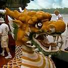 Into the Belly of the Dragon Boat by Nancy Richard