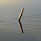 Busselton Wetlands by blueeyesjus