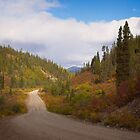 South Canol Road in early September by Yukondick