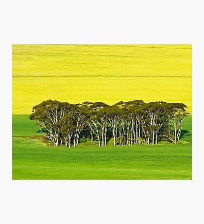 Aussie, Aussie, Aussie - Mount Matilda, Western Australia Photographic Print