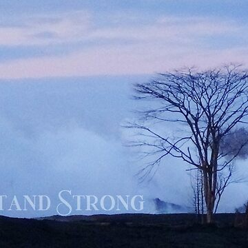 """AHT - Words Of Life  """"Stand Strong"""" by ApauHawaiiTours"""