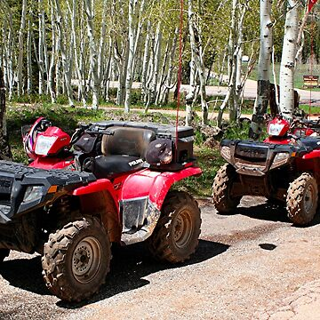 All terrain vehicles ready to go by FranWest