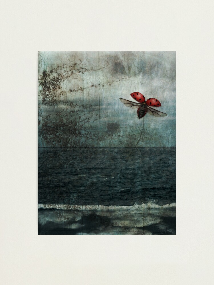 Alternate view of Over the Sea and Far Away Photographic Print