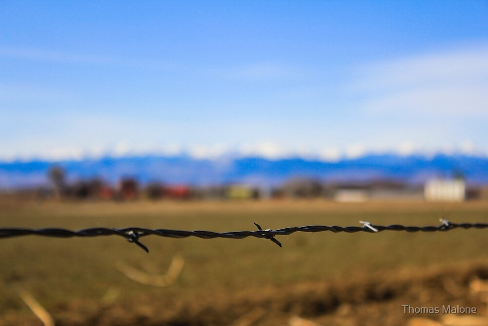Barbed Wire in Colorado by Thomas Malone