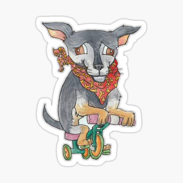 Julio the Chihuahua riding a tricycle Sticker
