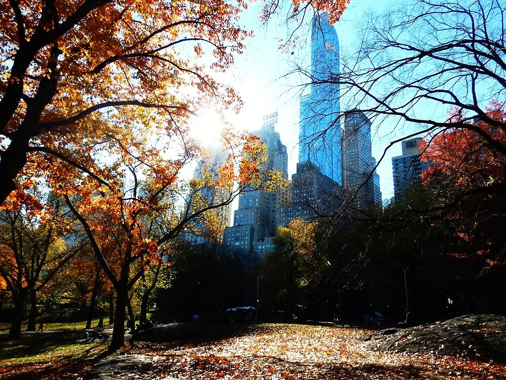 Central Park by Chanel Ioannou
