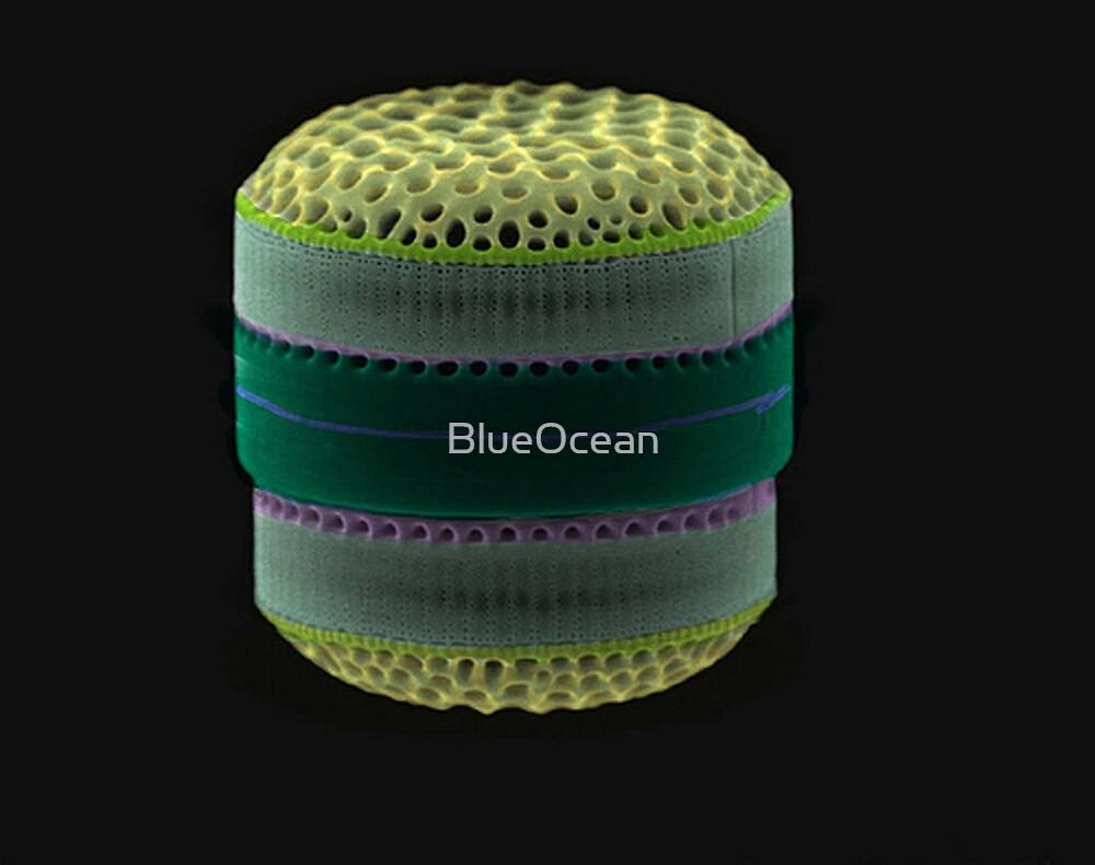 Tumbler by BlueOcean