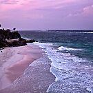 Crane Beach at Sundown by Brian Tarr
