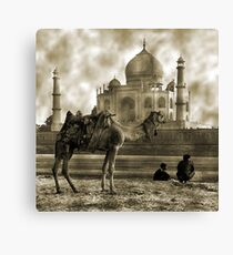 One Moment in Time Canvas Print