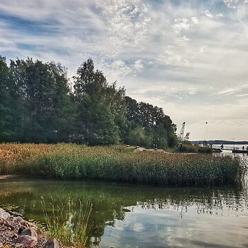 September Finnish Nordic lake and trees changing autumn fall shades photo  by paulmcnam