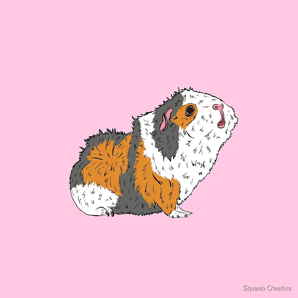Pop Art Pets! - Chirpy Abyssinian Tricolour Guinea Pig by Squeeb Creative