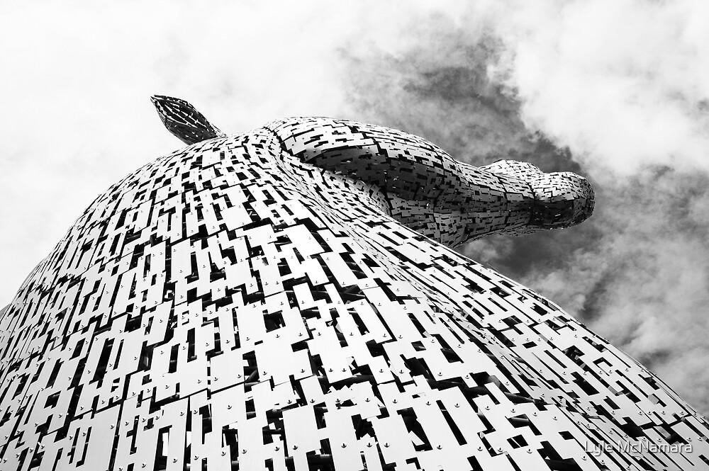 The Kelpies - Falkirk by Lyle McNamara