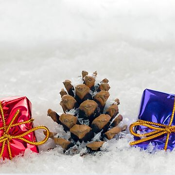 Christmas Presents and Fir Cone in Snow by MarkUK97
