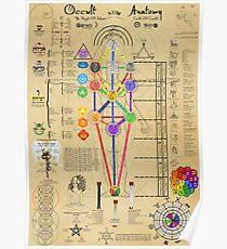 Okkulte Anatomie Poster