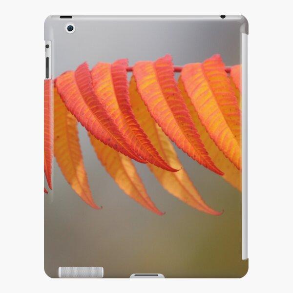 Herbstfarben iPad – Leichte Hülle