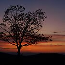 Sunset in Shenandoah by Shannon Workman