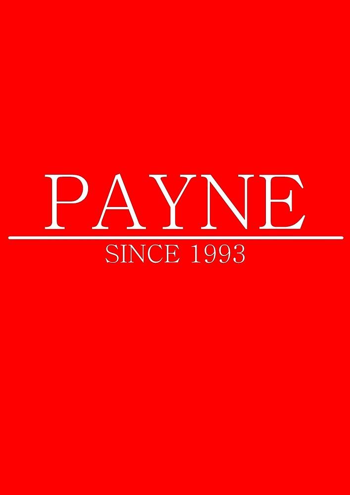 Liam Payne since 1993 by estella-4