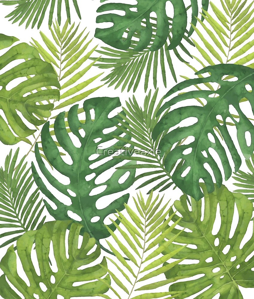 Tropicalist Monstera by Creativeaxle