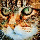 Cat Face by Leon Woods