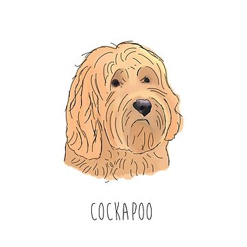 Cockapoo by alicedaisymae3