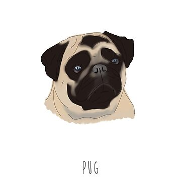 Pug by alicedaisymae3