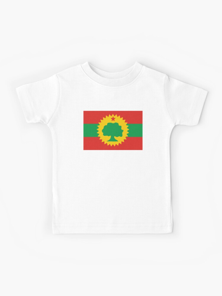 Proud to Be Ethiopian Flag Short Sleeve T Shirts Baby Boys