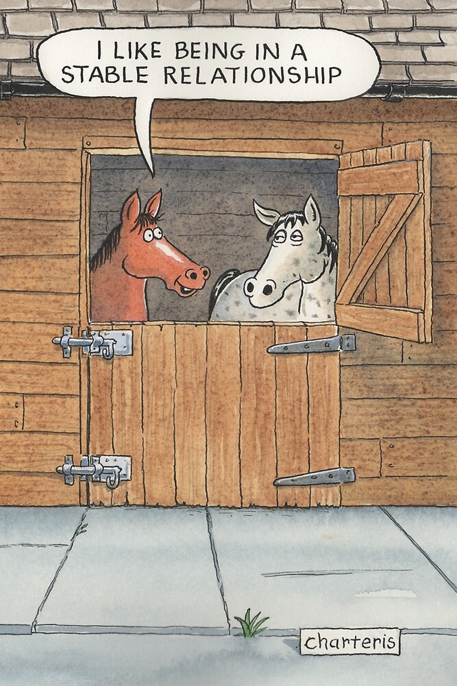 I Like Being in a Stable Relationship by Jamie Charteris