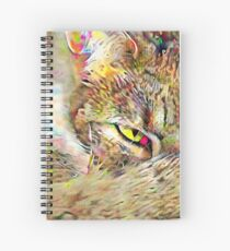 Mysterious Kitty Spiral Notebook