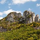 Seneca Rocks - Northern West Virginia by Scott Denny