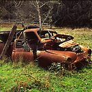 seen better days... by Tony Middleton