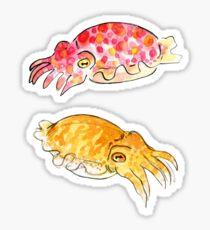 Cuttle Buddies Sticker