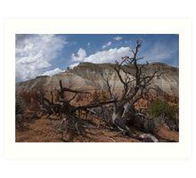 Kodachrome Basin, Utah Art Print