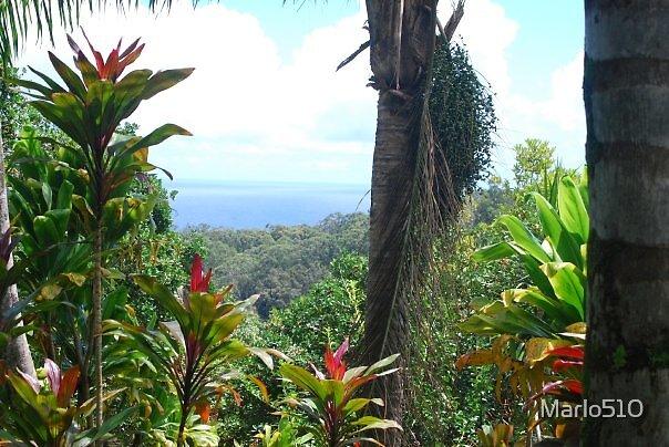Heart of Paradise, Garden of Eden, Maui, Hawaii\