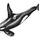 «Orca dibujo de tinta de Orca» de Chloé Yzoard