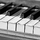 Music Lessons 098 by Warren Paul Harris