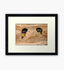 Two heads are better than One Framed Print