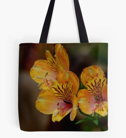 SHADES OF AUTUM Tote Bag