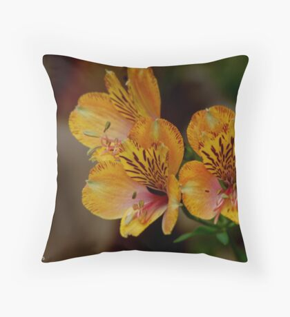 SHADES OF AUTUM Throw Pillow