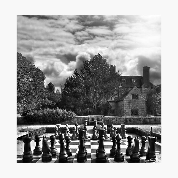 Groomsbridge Park B/W Photographic Print