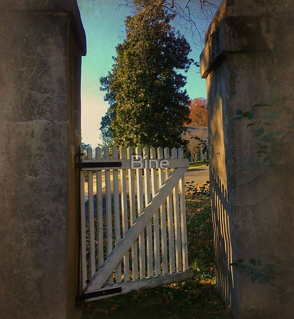 The little gate towards the mansion....... by Bine