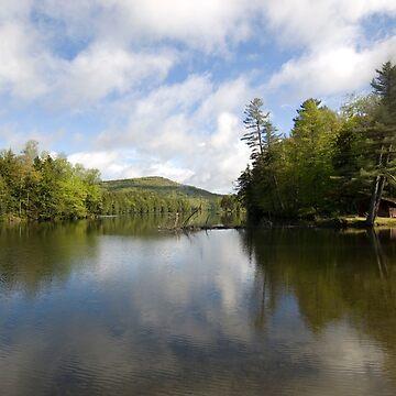 Mountain Lake Vista by srwdesign
