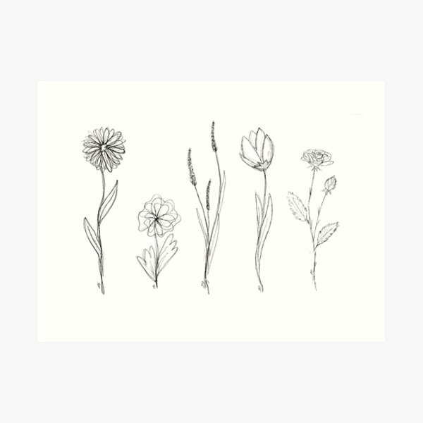 Flower Line Art Art Print