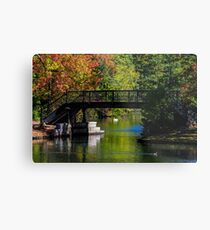 Fall in Roger Williams Park, Providence, RI Metal Print